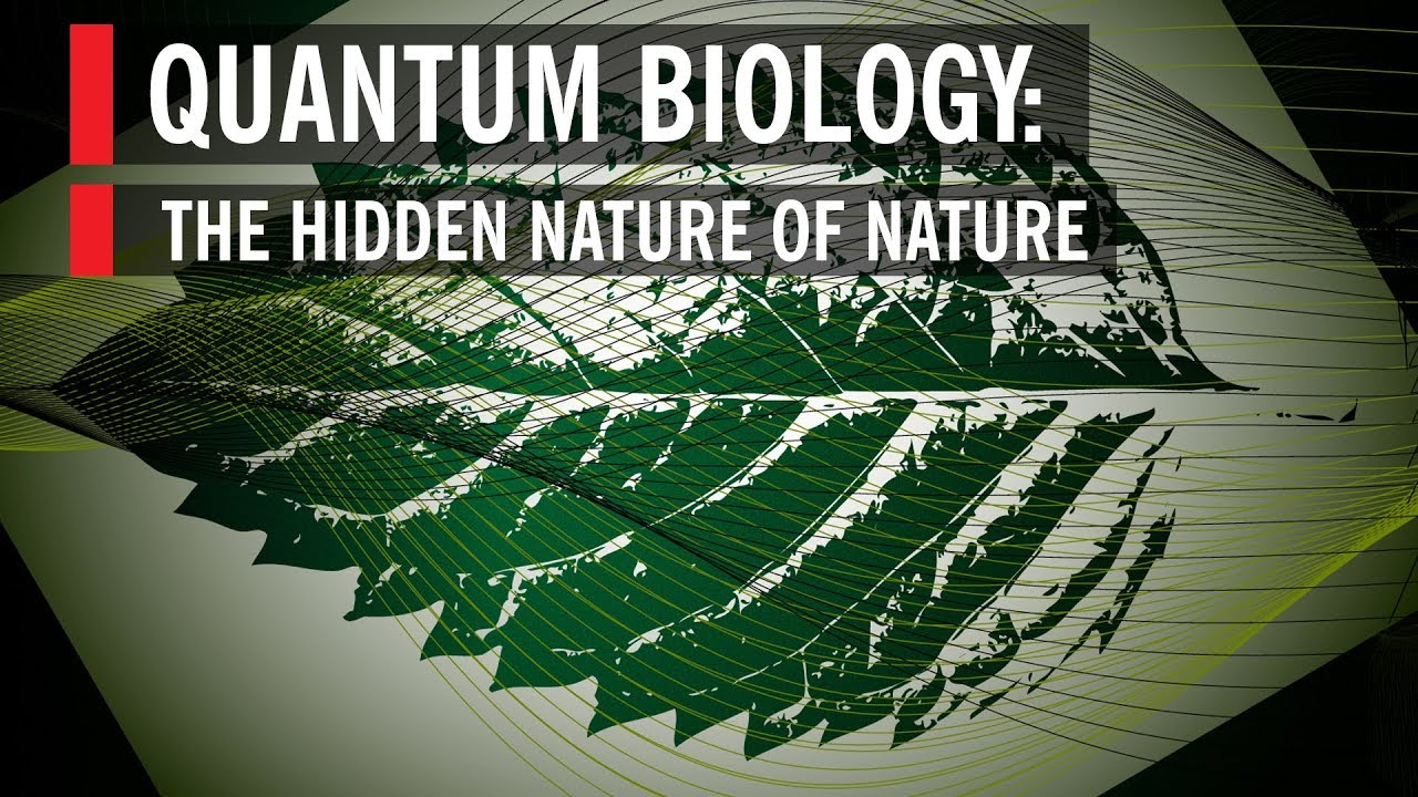 Quantum Biology: The Hidden Nature of Nature - YouTube