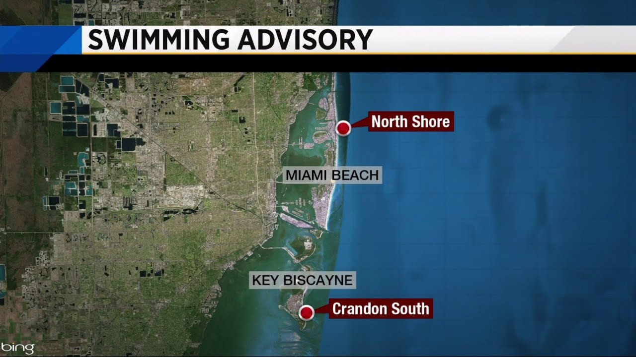 Inspectors detect dangerous bacteria at 2 beaches in Miami-Dade