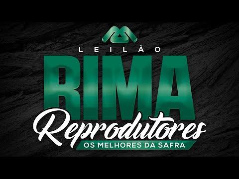 Lote 01   Rima Olímpico   RIMA A4503 Copy
