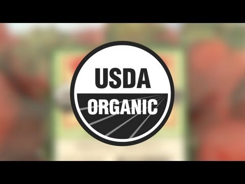 Top Foods To Buy Organic