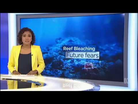 Great Barrier Reef, Coral Bleaching, Charlie Veron - ABC News