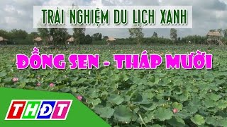 THDT - Trải nghiệm du lịch xanh ở Đồng Sen Tháp Mười - Ngõ ngách miền Tây