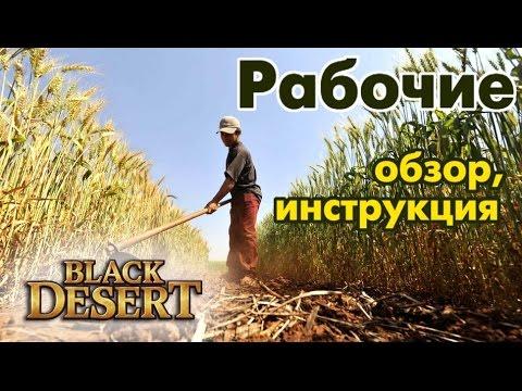 Black Desert (RU) - Рабочие (рабы). Инструкция по применению)