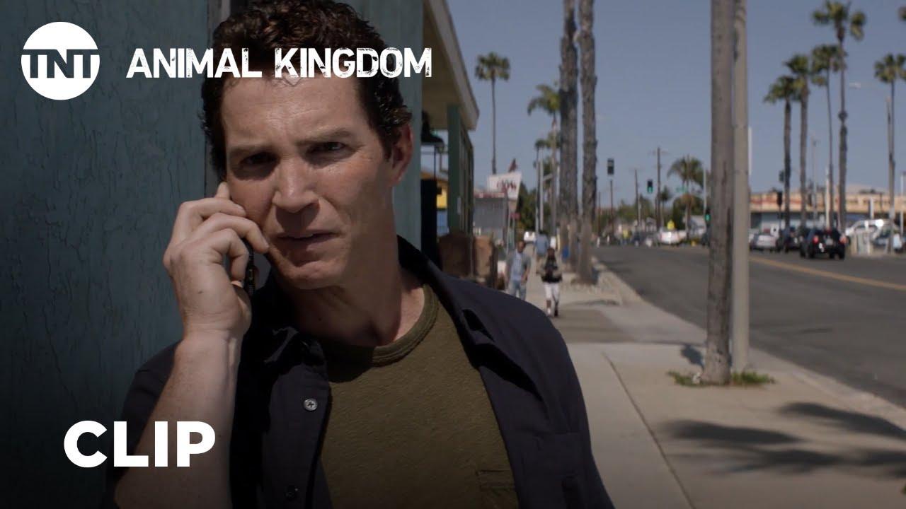 Download Animal Kingdom: Season Rewind - Season 3, Ep. 7 [CLIP] | TNT