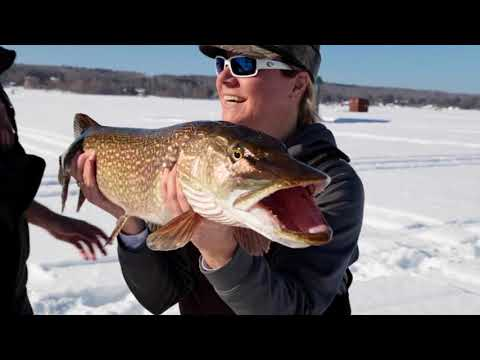 Year in review, Michigan Out of Doors TV  #1801