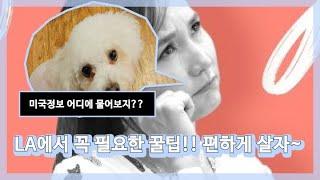 [미국 LA] 꿀팁 정보 여기서 보세요~#radiokorea,#missyusa#mijumom