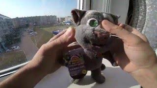 Говорящий Кот Том, самый скучный обзор игрушки