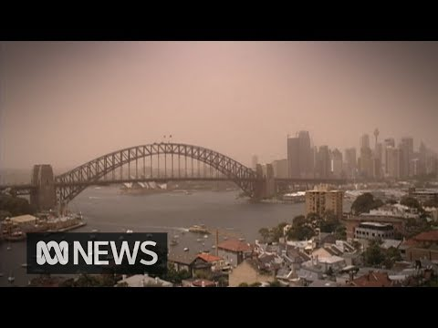 Dust storm hits Sydney Government issues air quality warning  ABC News