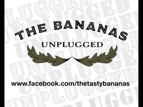 The Bananas live im Irish Pub Teil 2