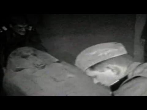 Ancient Alien Astronaut Found In Egypt?