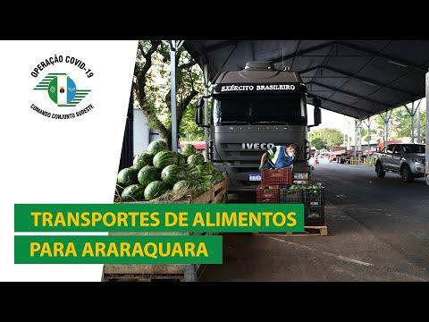 Militares transportam toneladas de alimentos para famílias carentes de Araraquara