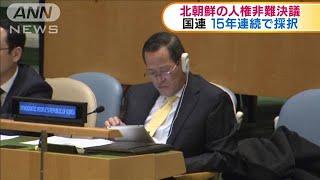 北朝鮮の人権非難決議15年連続で採択 国連総会(19/12/19)