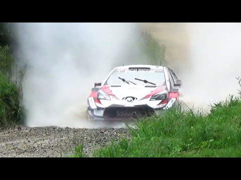 WRC TRIBUTE 2018: Maximum Attack, On the Limit, Crashes & Best Moments