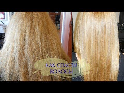Как восстановить волосы после осветления в домашних условиях форум