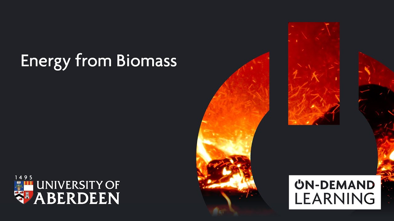 Energy from Biomass | Study Here | The University of Aberdeen