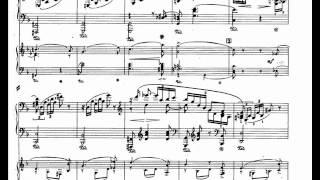 Schumann piano concerto in A minor op. 54 Intermezzo: Andantino grazioso [2\3]