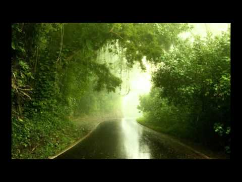 Lost in The Rain Forest   Deep Jazzy House 34