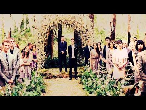 edward & bella's wedding | the twilight saga