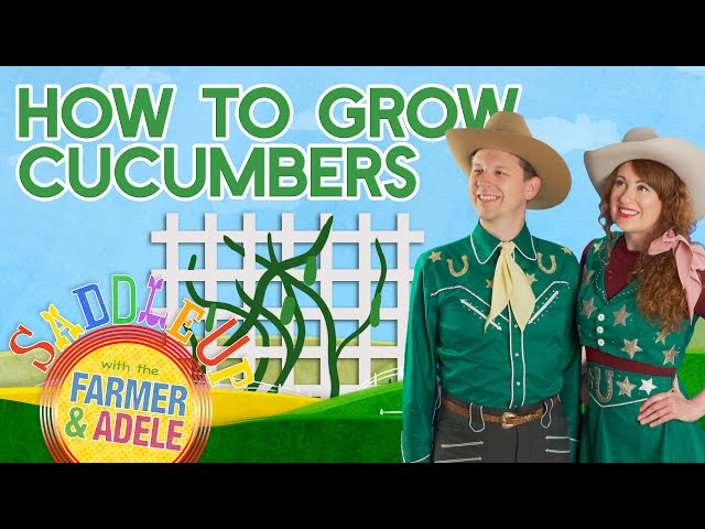 Saddle Up:  Fun Gardening for Kids, How To Grow Cucumbers