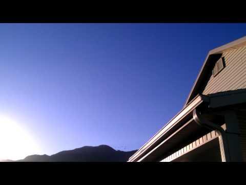 Loft Flying Racing Pigeons - Ashby Loft - 06/23/2012