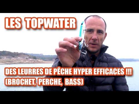 Les TOPWATER, des leurres de pêche HYPER EFFICACES !!! (brochet ,perche, bass)
