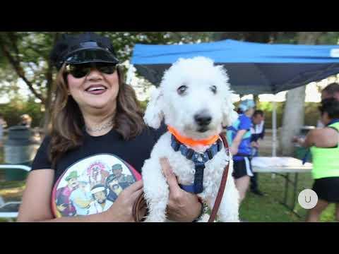 Los Angeles Frontrunners Doggie Dash 2018