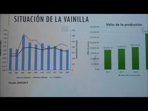 La innovación en la cadena agroindustrial vainilla (Vanilla planifolia Jacks. ex Andrews)
