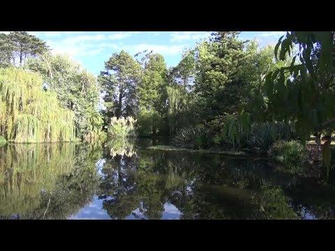National Trust Tree Replacement Program (Victoria)