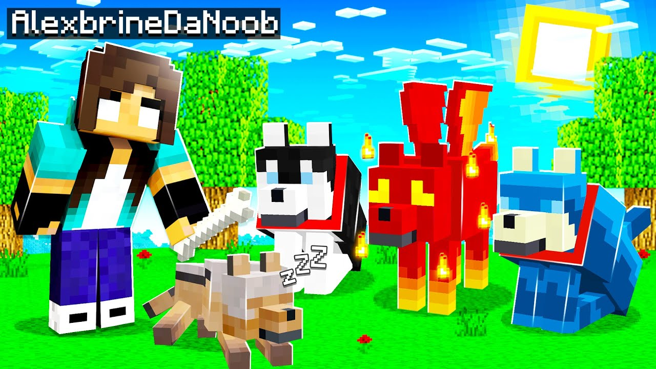 noob Girl finds NEW Pet Wolves! (Gone Wrong...)