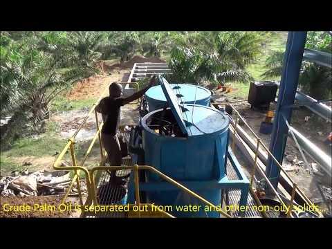 WACAPOL Palm Oil Mill 2017