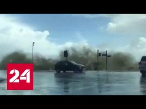 Наводнение в ЮАР: восемь человек погибли, тысячи людей эвакуированы