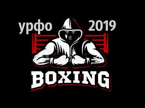 видео: kickboxing кикбоксинг - УрФО Челябинск 2019