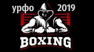 kickboxing кикбоксинг - УрФО Челябинск 2019