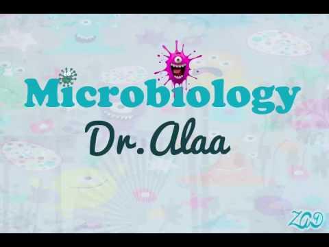 012 Microbiology |Dr Alaa - Immunity