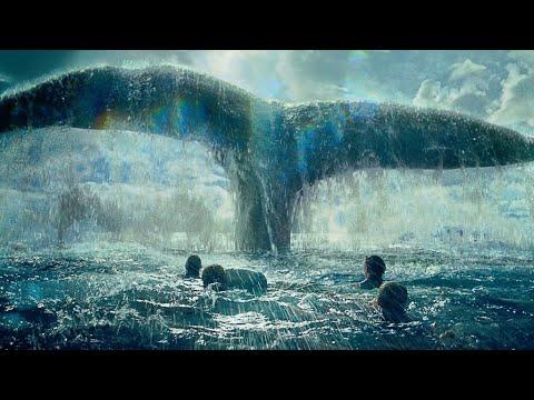 هل صوت الحوت الأزرق من علامات الساعة موقع المحيط