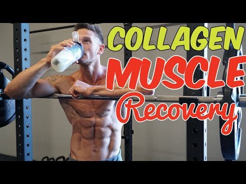 Muscle Recovery: How Effective is Collagen Protein- Thomas DeLauer