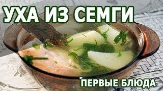 Рецепты блюд. Уха из семги простой рецепт приготовления блюда