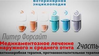 Лечение наружного и среднего отита. Антимикробная терапия, противовоспалительная терапия