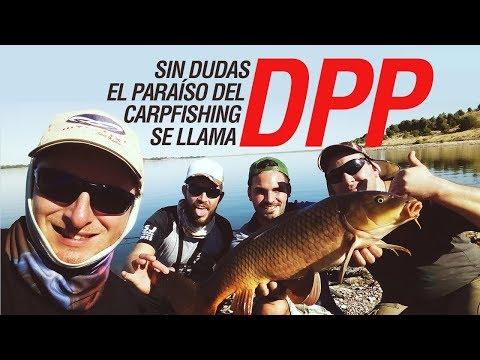 DPP Es El Paraíso Del Carpfishing Argentino