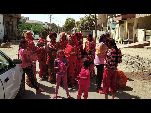 बीकानेर होली : महिलाओं ने मचाई धमाल...
