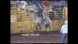 Rodeio TOURO TOUCHÊ