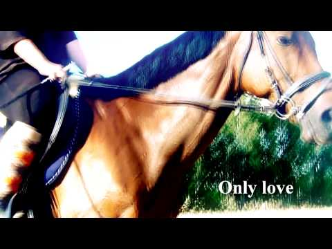 Only Love.  HD