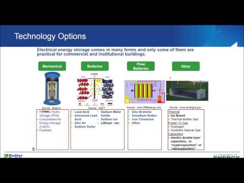 Energy Storage: Overview and Case Studies