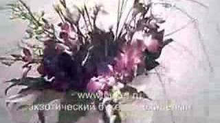 Букет цветов из орхидей