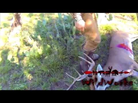 GoPro Hero Bow Hunt For Whitetail Buck Deer - Self-filmed