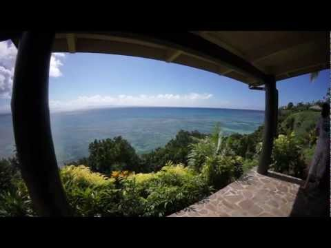 Trip to Taveuni Island & Dives in Somosomo Straits