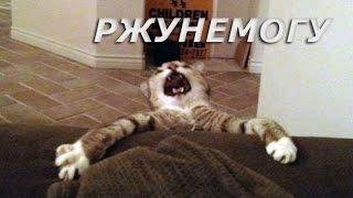 Смешное видео, Приколы РЖУНЕМОГУ #7