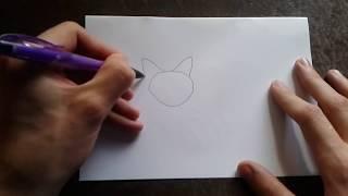 Как поэтапно нарисовать ТИГРА для начинающих и детей? How to DRAW TIGER