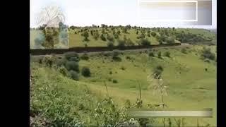 #Eritrea  الشاعر حامد الحسين عاشق إرتريا