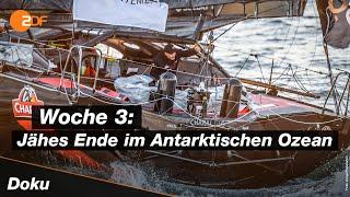 Nach zahlreichen schäden am boot und zeitintensiven reparaturen meldet sich vendée-globe-favorit alex thomsen zurück im rennen – wenn auch nur kurz. der deut...